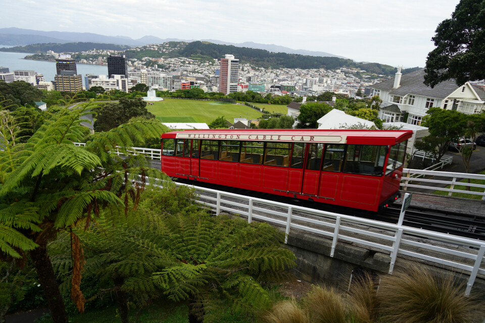 Die berühmte Wellington Cable Car darf bei keiner Stadtrunde fehlen.