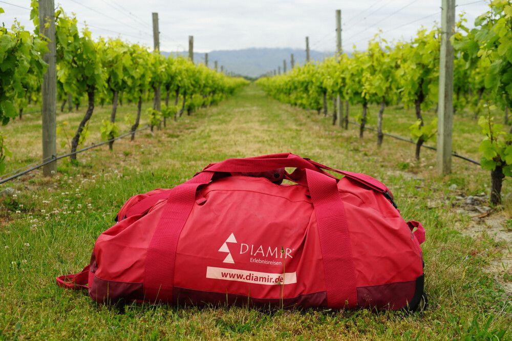 In den Weinfeldern des Marlboroughs im Norden der Südinsel findet man die besten Weine Neuseelands.