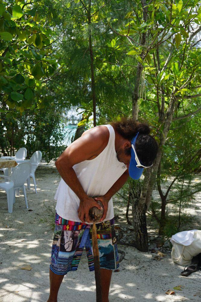 Wie wird eine Kokosnuss geöffnet?