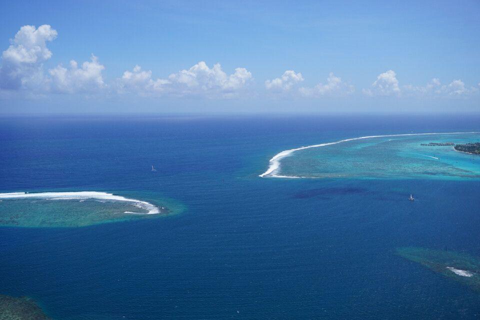 Die Lagune von Moorea vom Aussichtspunkt – Die Overwaterbungalows des Interconti im Hintergrund