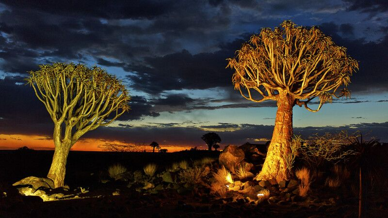 Namibia - der Süden © Diamir