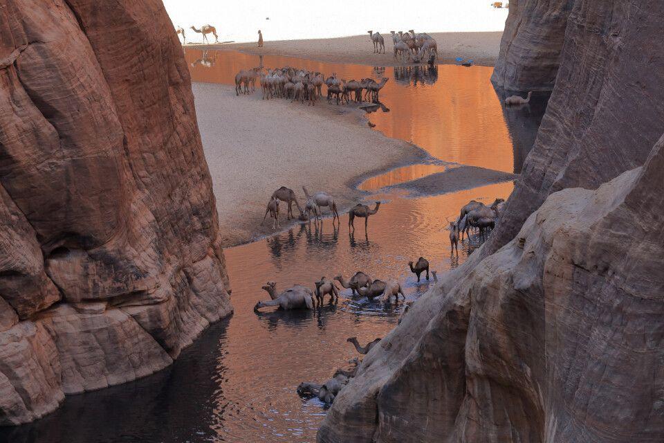 Das legendäre Guelta D'Archei