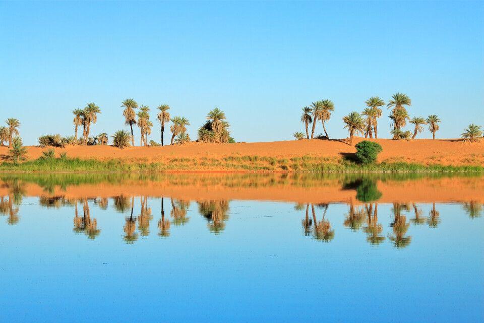 Sahara-Idylle am Lac Katam