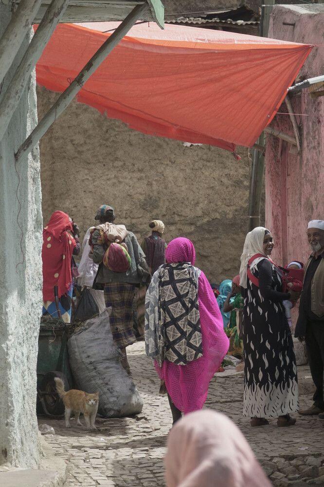Bevölkerung in Harar