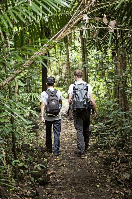Wanderung im Dschungel von Vietnam