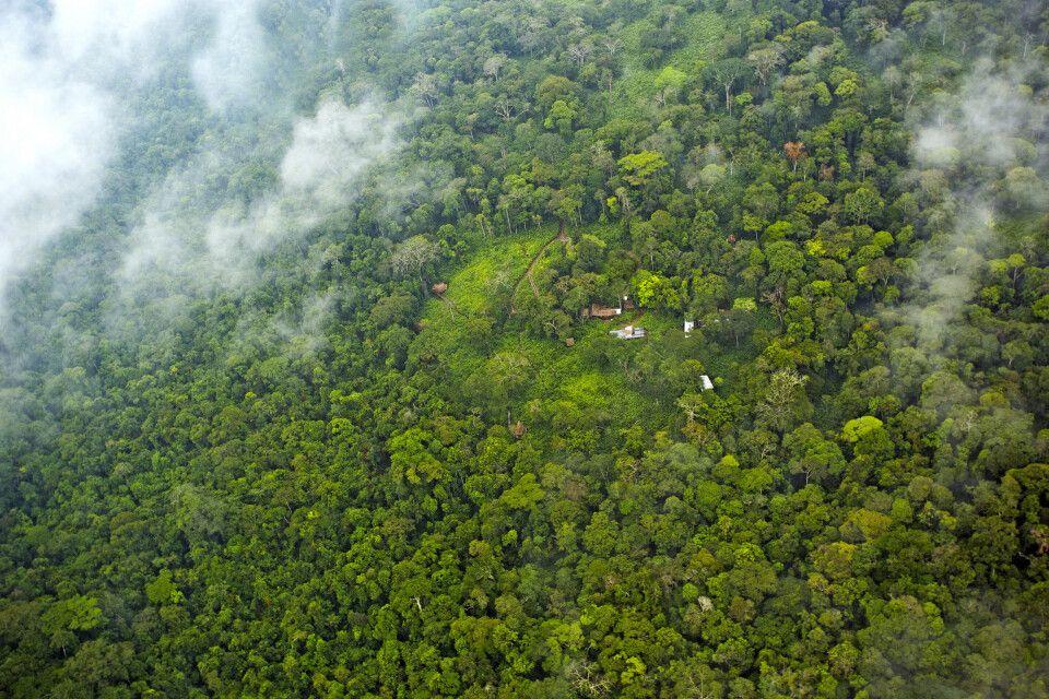 Ngaga Camp, mitten im Odzala-Nationalpark