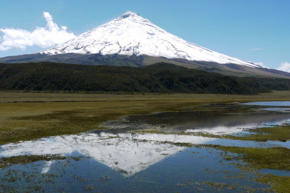 Bilderbuchvulkan Cotopaxi (5897 m)