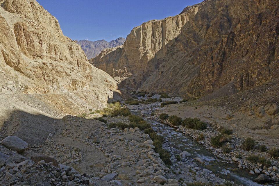 Ladakh Nubra Valley Skarchen nach Hundar Dog