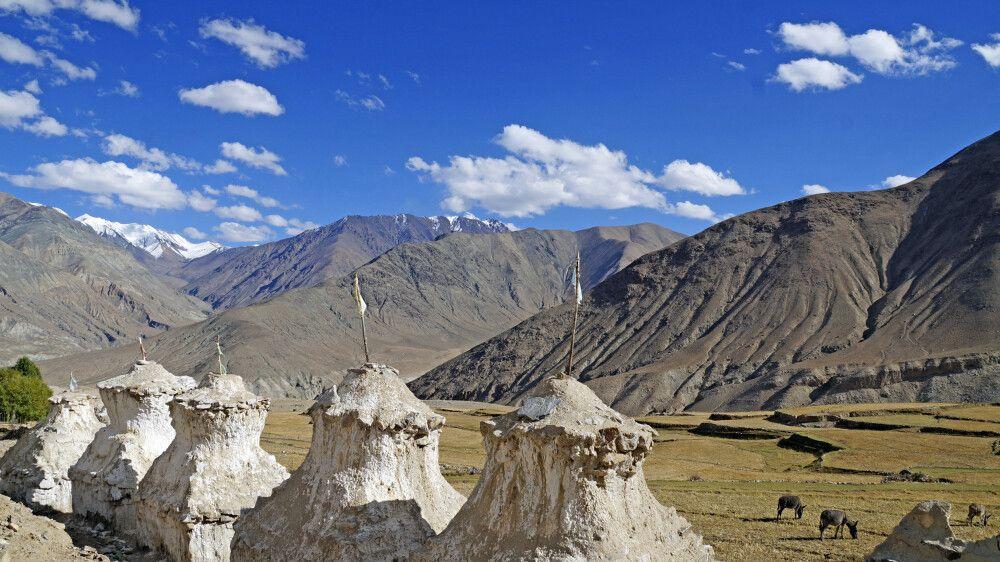 Ladakh Nubra Valley in Digar