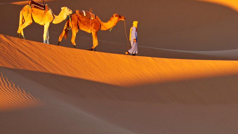 Wüstenwanderung © Diamir