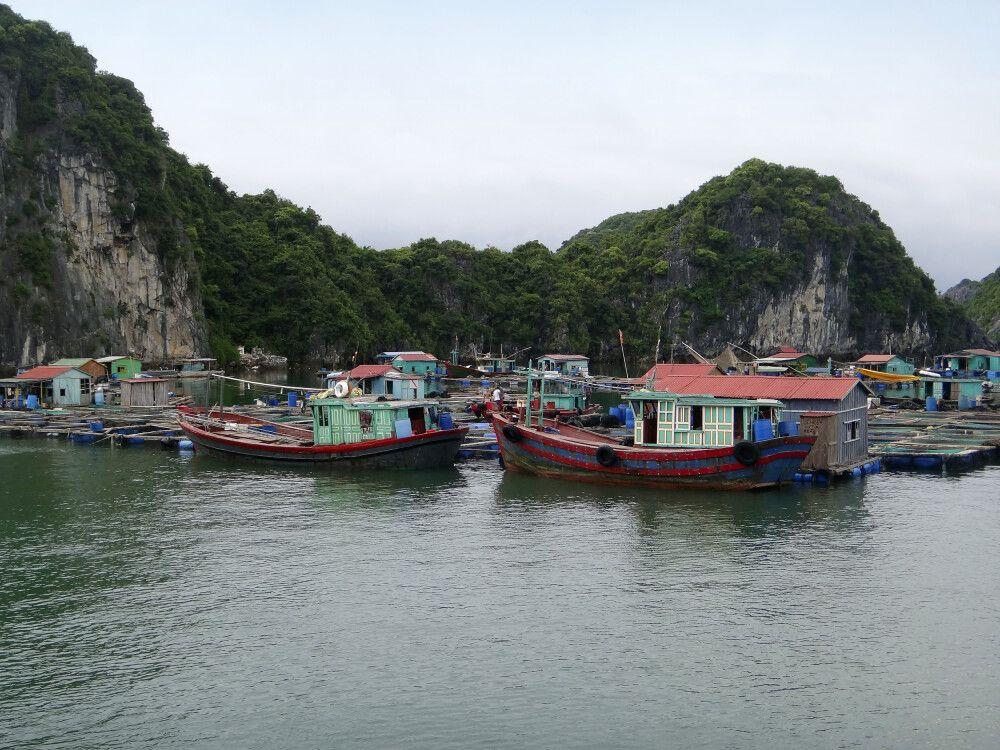 Cát-Bà-Nationalpark - UNESCO Biosphärenreservat
