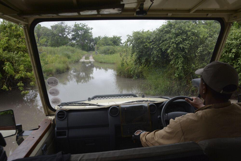 Unterwegs auf den Pisten im Moremi und Chobe während unseres Regenzeit-Aufenthaltes