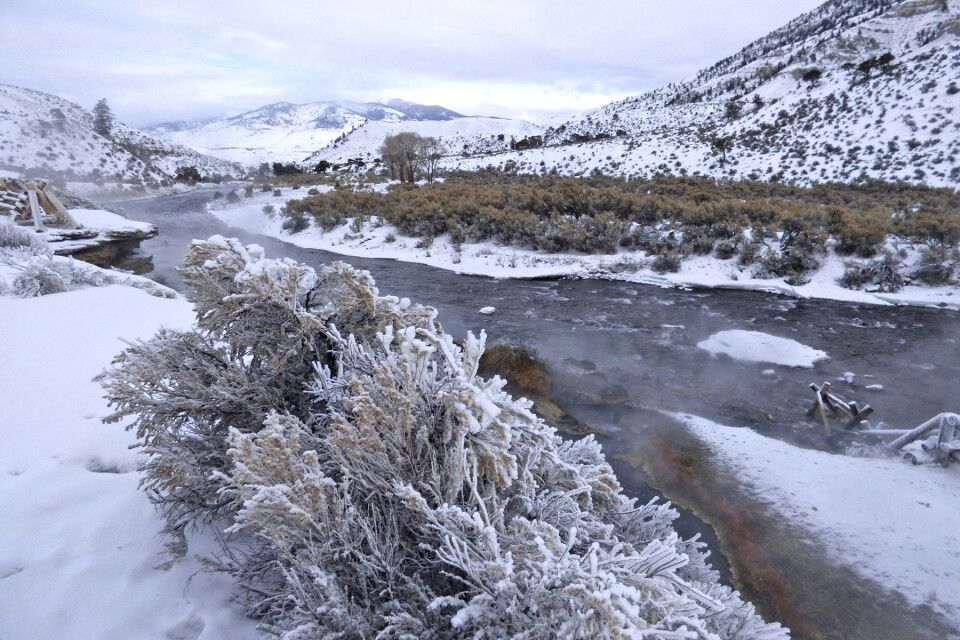 Flusslandschaft im Winter im Yellowstone-Nationalpark