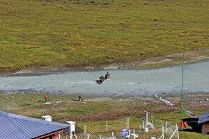 Per Pferd über den Fluss