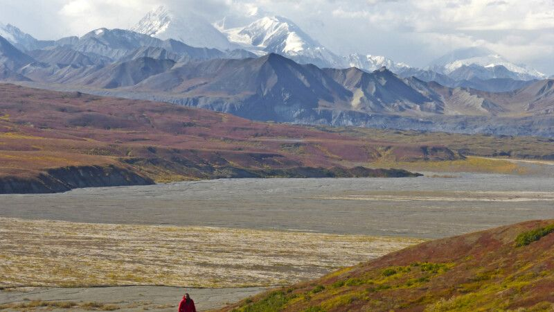 Blick vom Eielson Visitor Center Richtung Mount Denali © Diamir