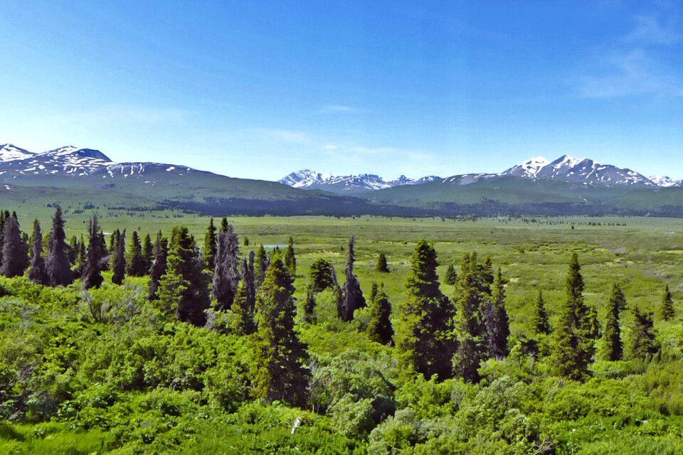 Blick von der Haines Road auf die Tatshenshini-Alsek-Wildnis nahe dem Kluane-Nationalpark