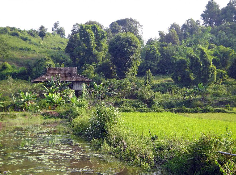 Dorf der schwarzen Thai in der Nähe von Dien Bien Phu