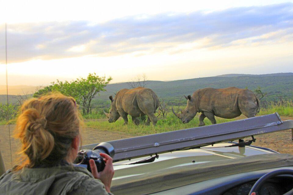 Auf Nashornpirsch im Hluhluwe Game Reserve