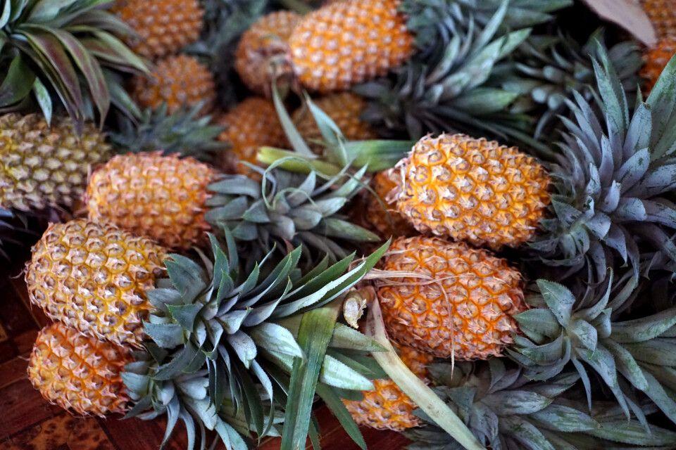 Ananas auf dem Markt in Lautoka