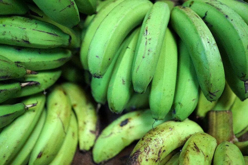 Bananen auf dem Markt in Lautoka