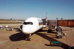 Airbus A350 der Singapore Airlines, wir fliegen planmäßig mit Turkish Airlines. Andere Verbindungen und Stoppover auf Anfrage.