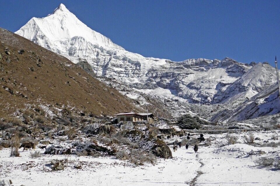 Jomolhari-Trekking vorbei am Jichu Drake (6990 m), dem schönsten Gipfel Bhutans