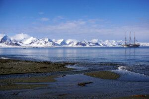 An der Küste von Prinz Karl Vorland