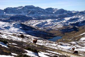 Herrliche Landschaft in der Cordillera Tunari