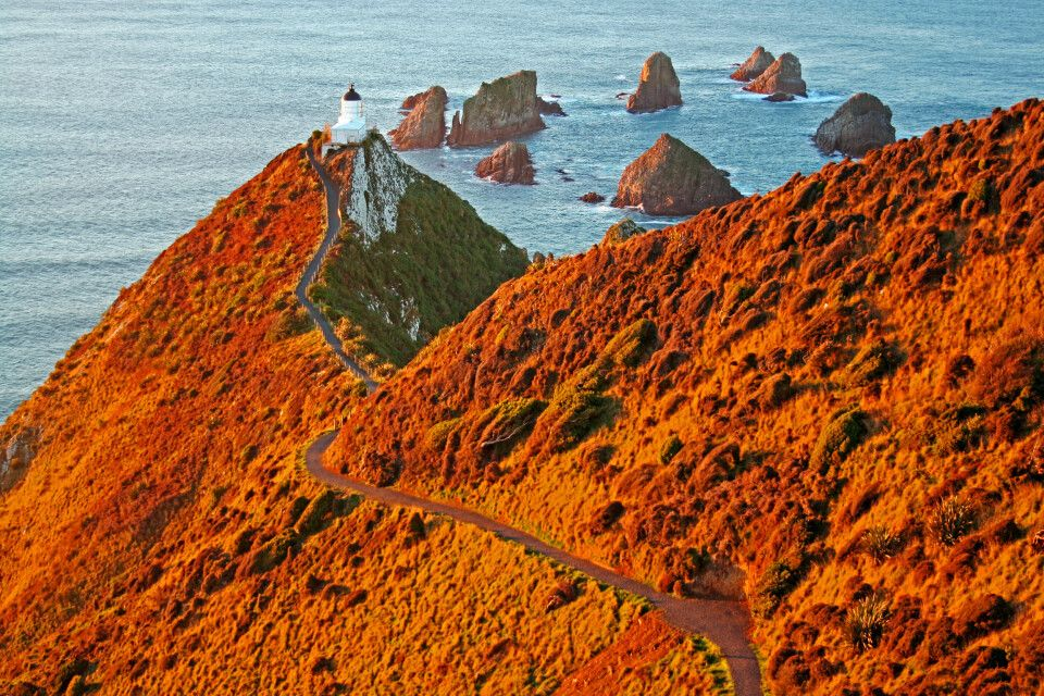 Kap Nugget Point, Southland, Neuseeland