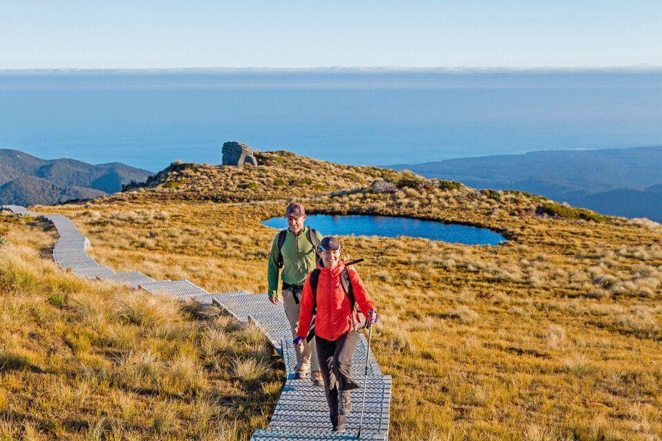 Hügelwanderung im Fiordland, Neuseeland