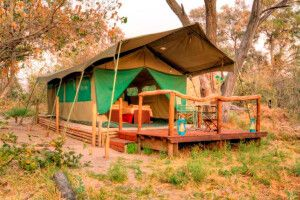 Privates Camp: Khwai River View Camp