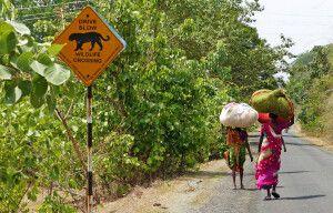 Zentralindien Frauen bei der Arbeit