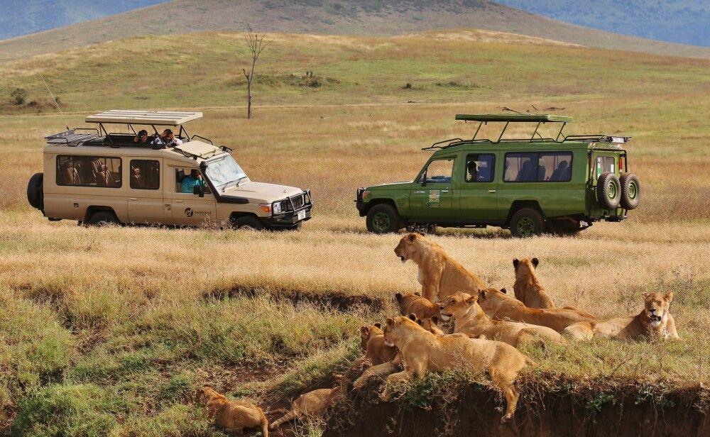Essen auf Rädern im Ngorongoro Krater