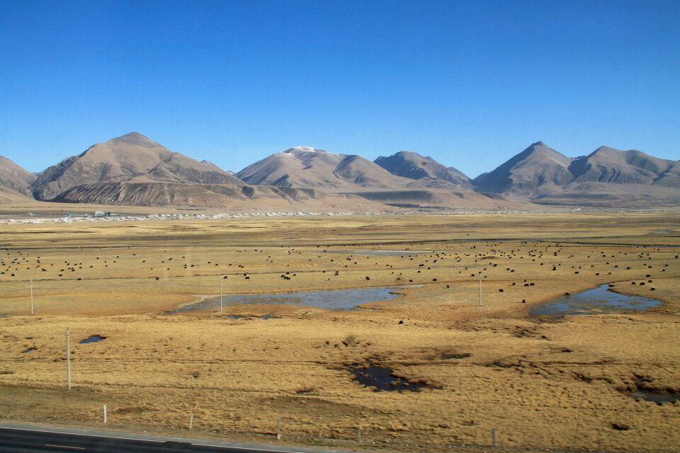 Mit dem Himmelszug unterwegs in der tibetischen Hochebene