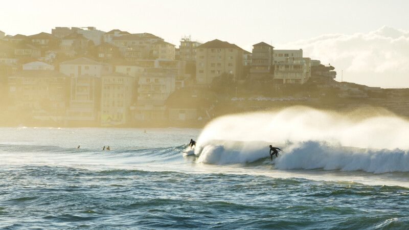 Surfer in Sydney © Diamir