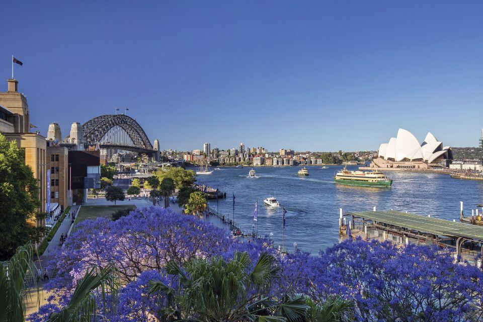 Frühling in Sydney