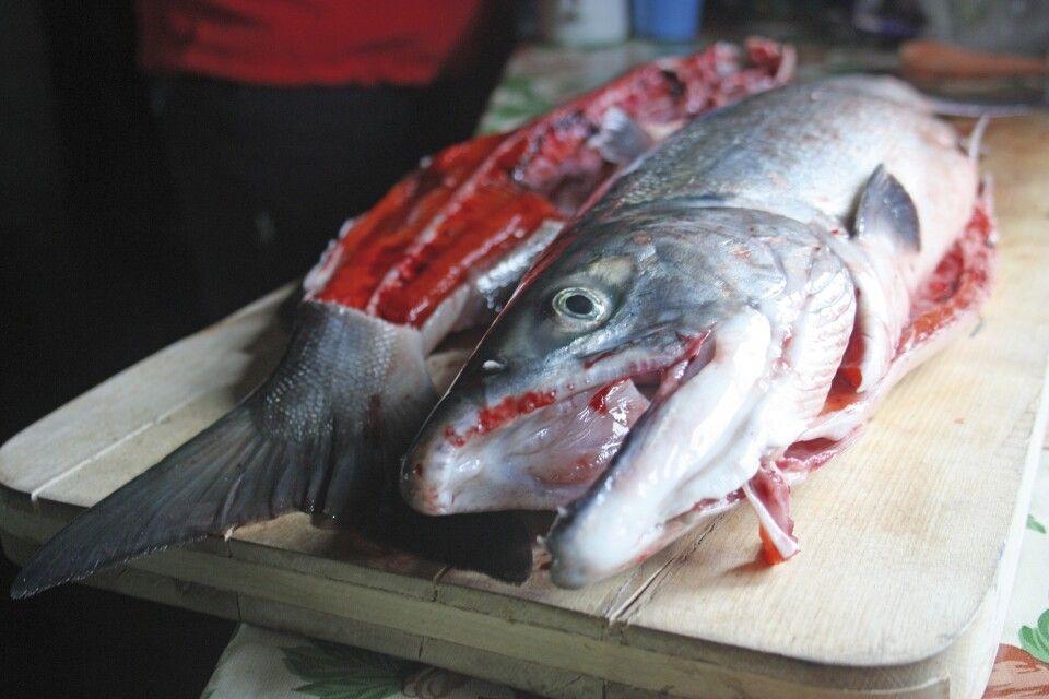 Lachs zum Abendessen