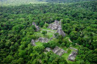 Die riesige Anlage von Tikal aus der Luft