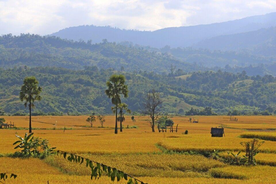 von Bagan ins Land der Chin
