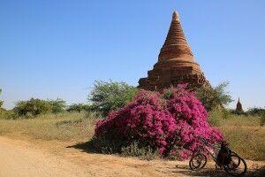 Mit dem Fahrrad durch die historische Königsstadt Bagan