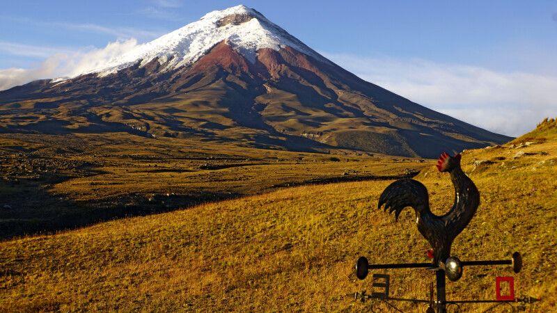 Blick auf den Vulkan Cotopaxi © Diamir