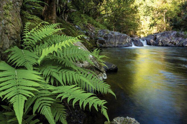 Crystal Kaskaden bei Cairns, Queensland