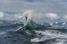 Spektakuläre Welle, Südgeorgien