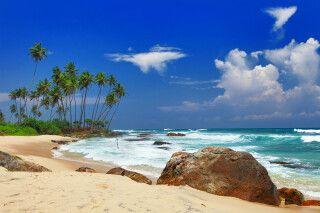 Schöner Sandstrand an Sri Lankas Küste