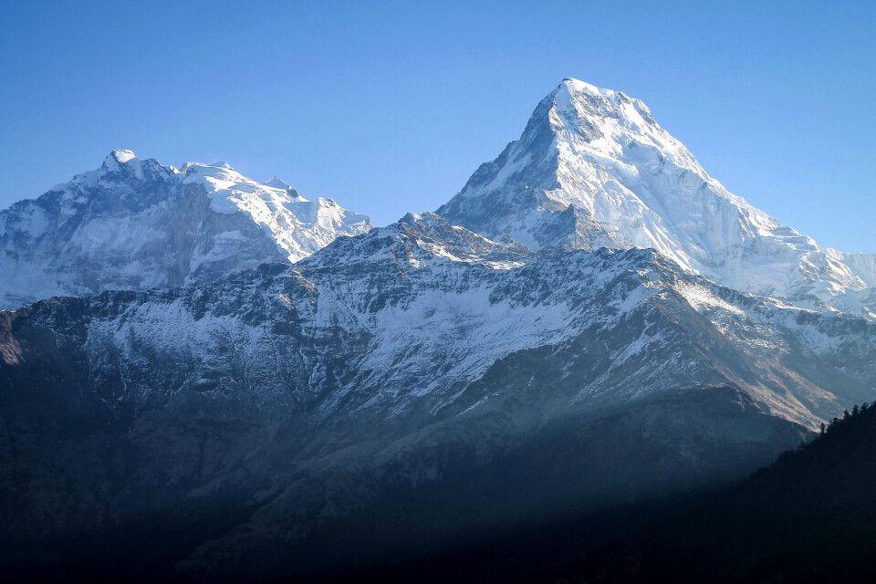 Im Angesicht von Annapurna-Süd (7219m)