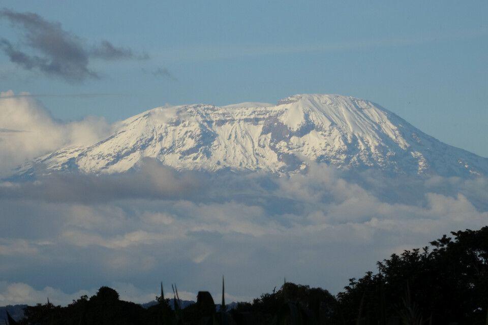 Kilimanjaro mit Blick aus der Arusha Region