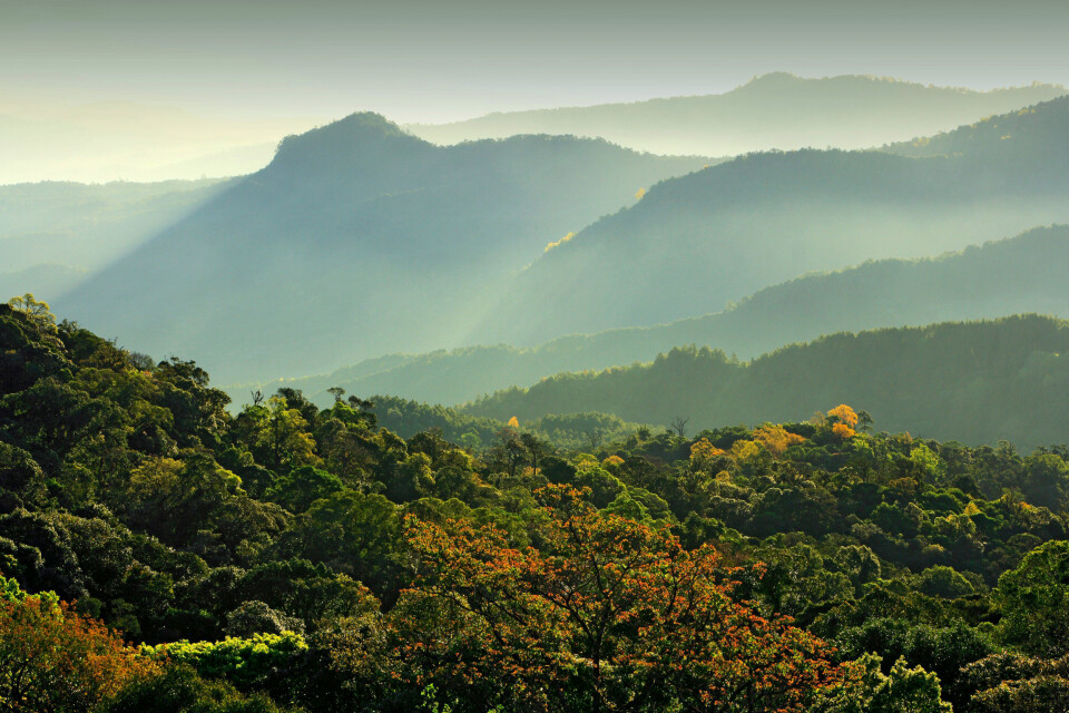 Doi Inthanon National Park in Chiang Mai