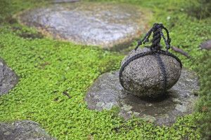 Japanische Gartenkunst