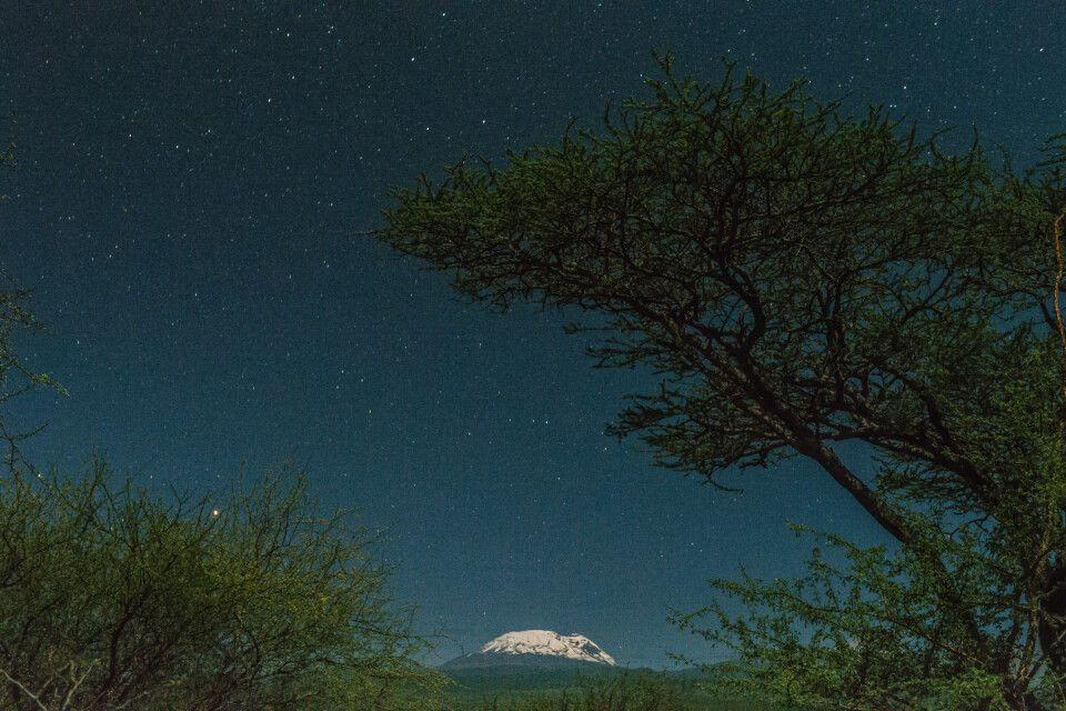 Der Kilimanjaro im Mondlicht