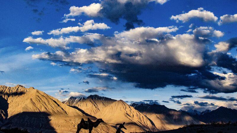 Sanddünen von Hundar im Nubra Valley © Diamir